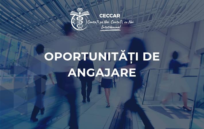 Oportunitate de angajare: director financiar în cadrul unei companii internaționale de investiții în domeniul imobiliar