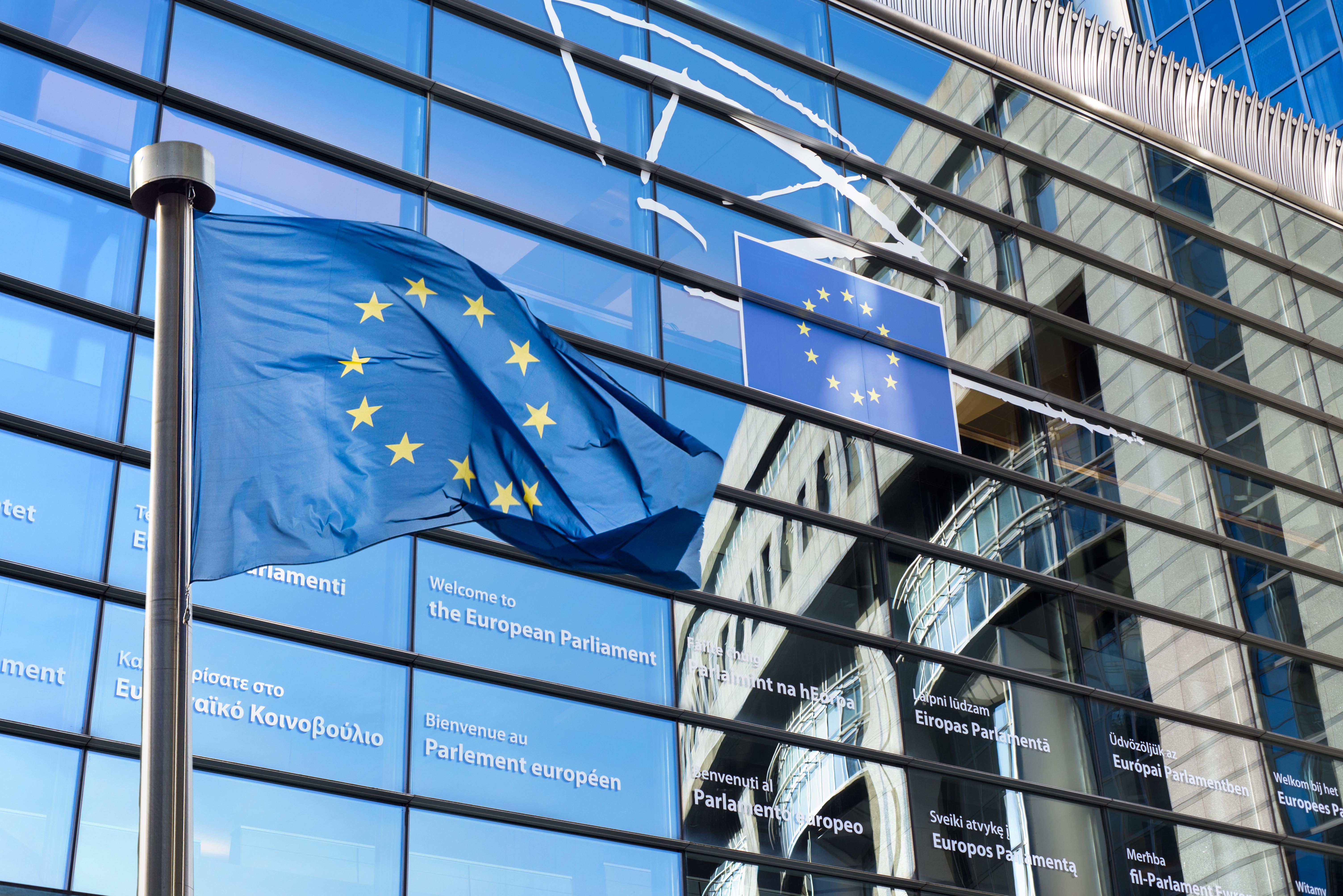 Parlamentul European a publicat proiectul finalal raportului TAX3