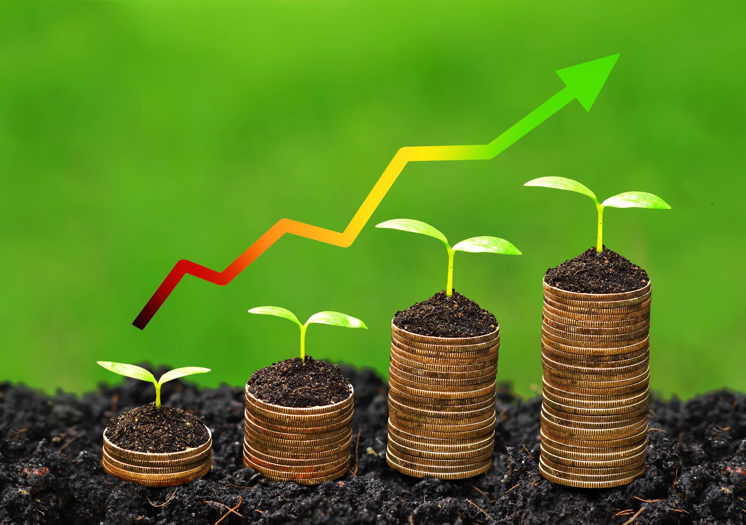 IFAC face un nou pas pentru a susține raportarea informațiilor referitoare la sustenabilitate