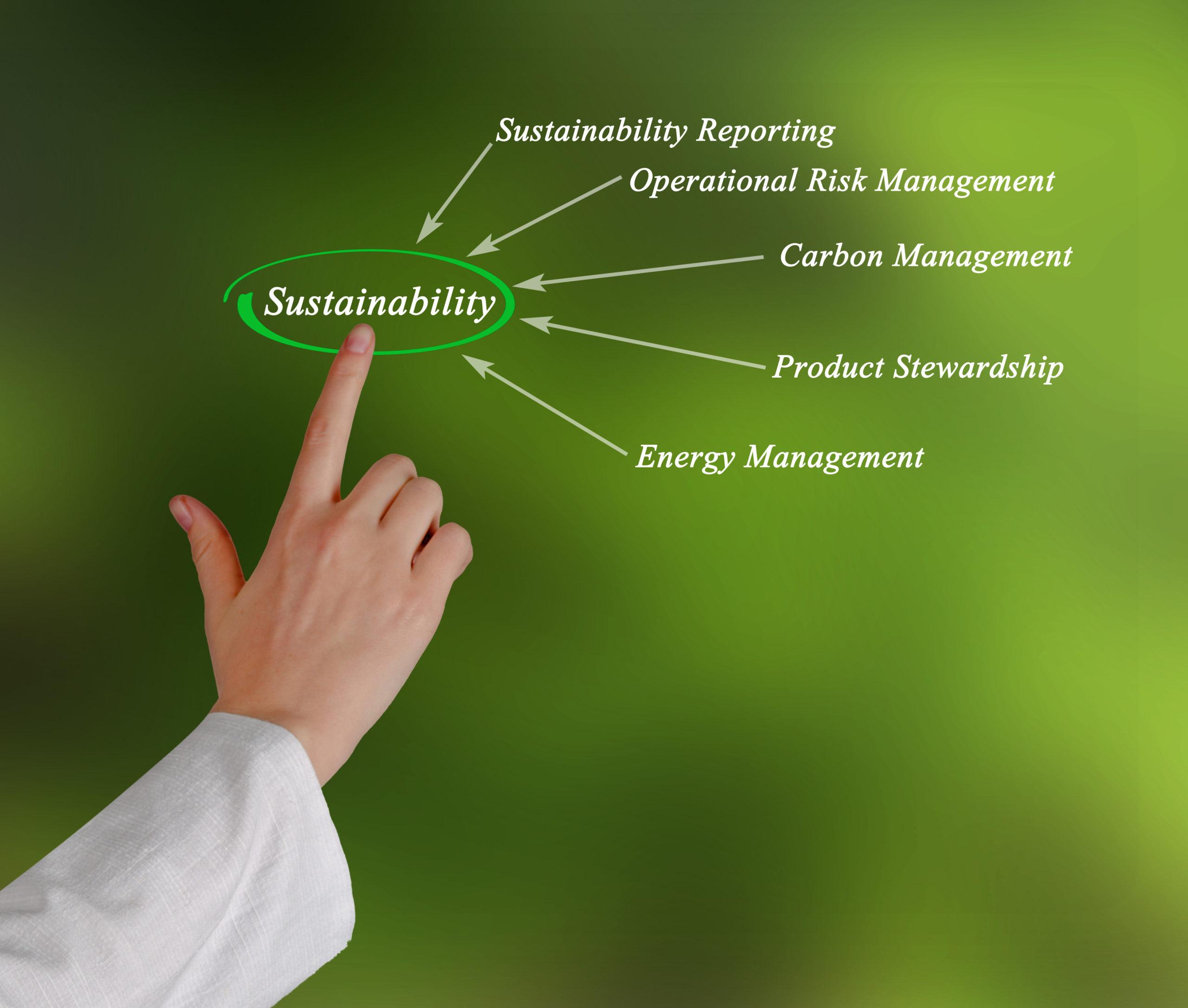 IFAC solicită părților interesate să se pregătească acum pentru Standardele Globale de Sustenabilitate