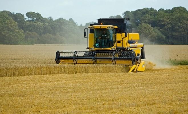 MADR va lansa sesiunea de depunere de proiecte pentru investiții în exploatații agricole